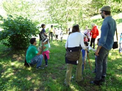 Creativi per natura: giochi, danze e arte all'ombra del bosco