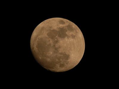 I sentieri della luna: passeggiata notturna con letture animate
