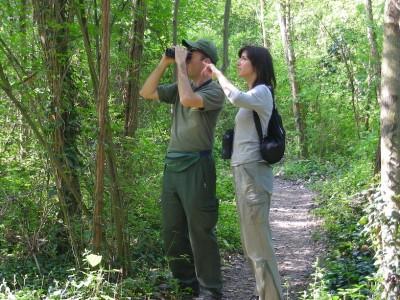 Naturalista per un giorno: un mini corso per appassionati e curiosi per natura
