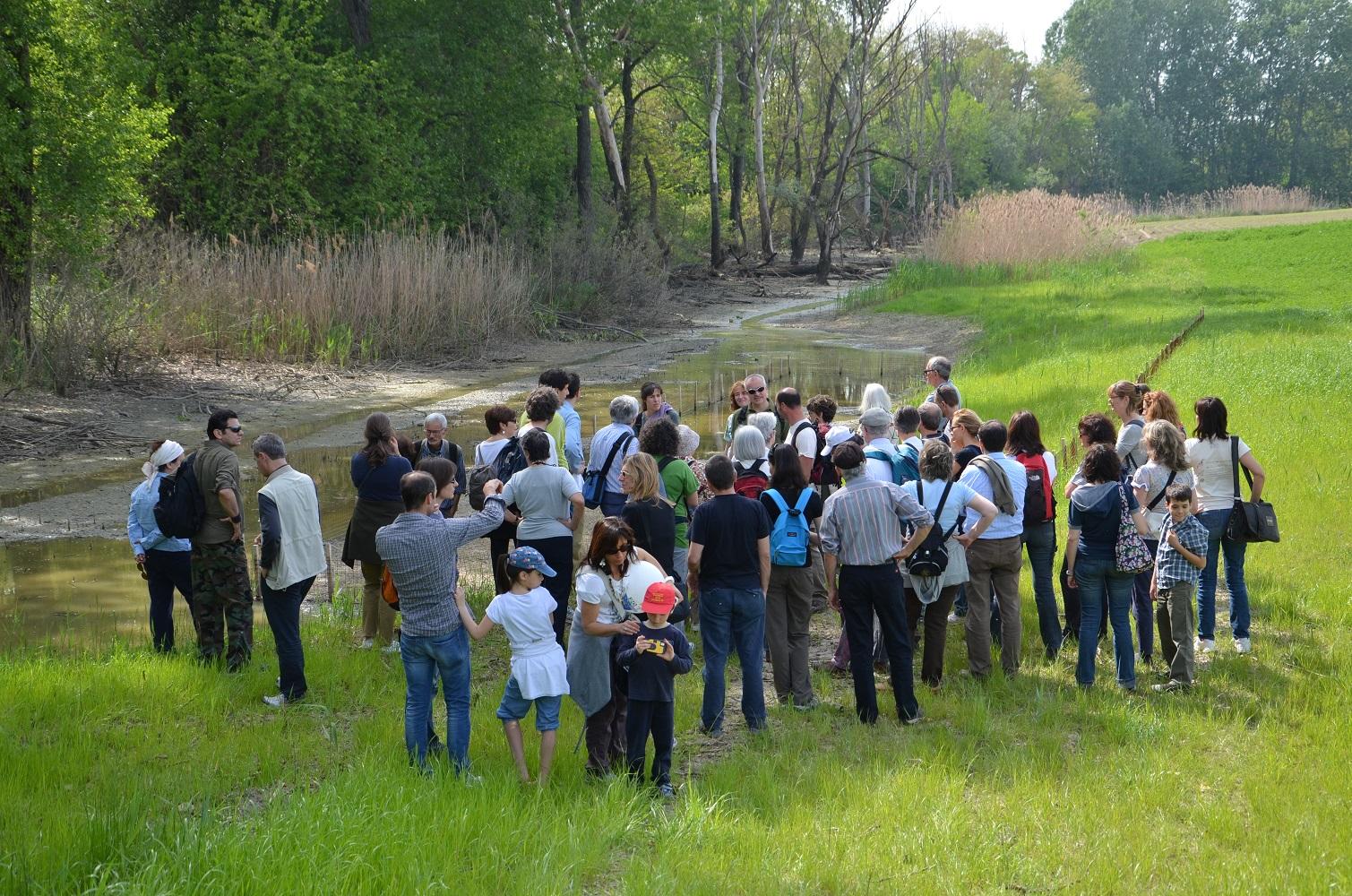 A passeggio con il fitosociologo - Visita guidata alla scoperta della biodiversità dei prati stabili e degli habitat comunitari della Riserva naturale Parma Morta - ESPERTA Srl