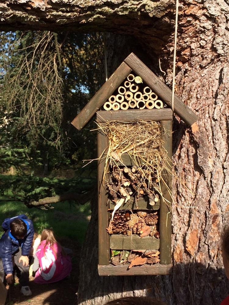 Bugs hotel - laboratorio gratuito al Parco del Taro